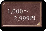 1,000~2,999円