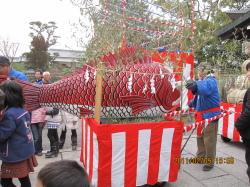 20110209鯛引き